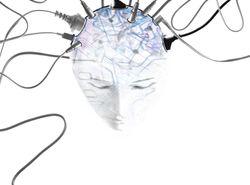 Brainwiring