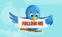 Twitter-bird-pic-follow-me